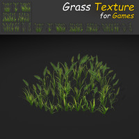 Feather Grass Texture