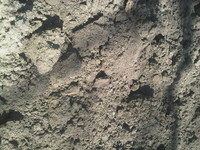 Soil landscape