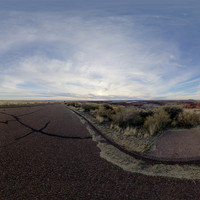 Petrified Forest 80