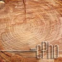 TEXTURE - Sawn Wood Grain 01c