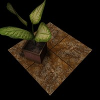 Stone Yellow Travertine Tiles B