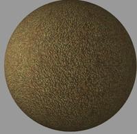 Avocado 1 | Tileable | 2048px
