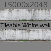 White concrete wall with dirt - Hi res