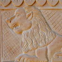Loin Stone Art Texture 02