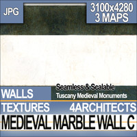Medieval Marble Wall C
