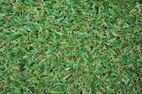 Grass_Texture_0005