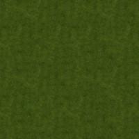 Grass_007 sc