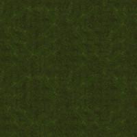 Grass_010 sc