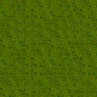 Grass_020 sc