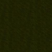 Grass_029 sc