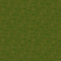 Grass_049 sc
