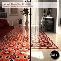Hydraulic Mosaic Tiles Set - n.003
