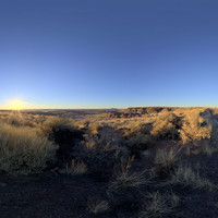 Petrified Forest 62