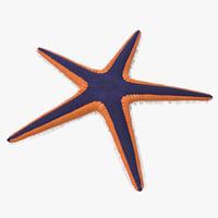 3dsmax royal starfish astropecten articulatus