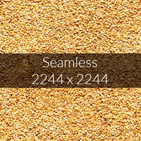 Sesame texture map 06