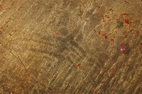 Goldleaf_Texture_0002