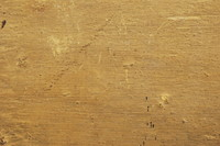 Wood_Texture_0007