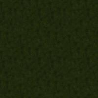 Grass_040 sc