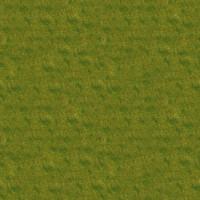 Grass_050 sc