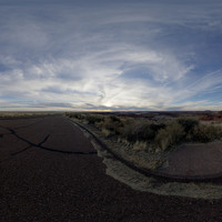 Petrified Forest 82