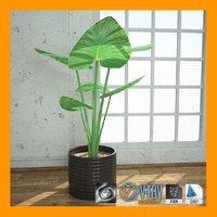 interior plant 04 max