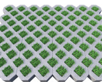 c4d grass pavers