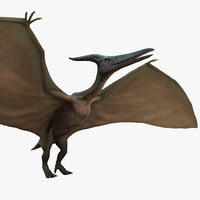 Pterodactyl Rigged