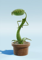 cartoon carnivore plant 3d obj