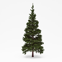 3ds max conifer 06