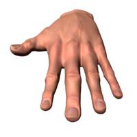 Male Human Hand