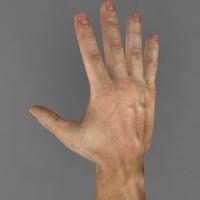 3d model hand man