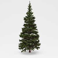3ds max conifer 02