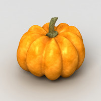 pumpkin fruit 3d model