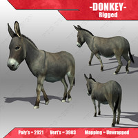 3d model donkey animations
