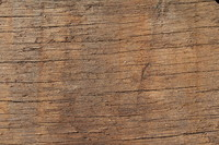 Wood_Texture_0009