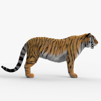 3d model tiger hair fur