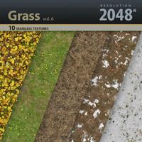 Grass Textures vol.6
