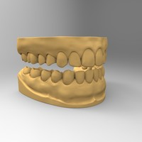 maya standard teeth tooth