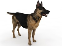 german shepherd dog 3d model