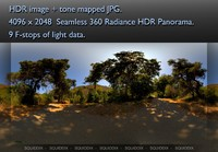 MIDDLE OF EMPTY AFTERNOON PAVED MOUNTAIN ROAD AMONG TREES 360 HDR PANORAMA #288