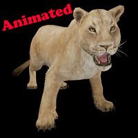 3dsmax female lion animal