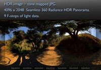 MIDDLE OF EMPTY SHADY MOUNTAIN DIRT ROAD UNDER TREES 360 HDR PANORAMA #299