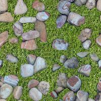 grass with rocks1