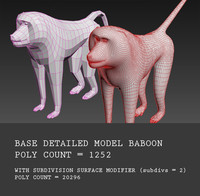 Base model of Baboon