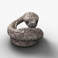 3d model ern diamond snake rigged