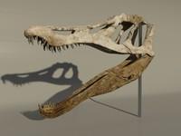 3dsmax baryonyx skull