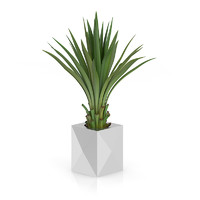 3d small palm metal pot