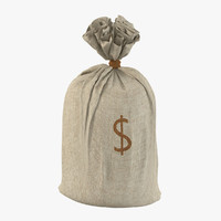 3d money sack model