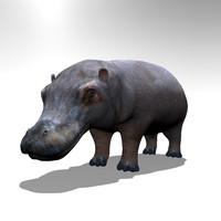 3d model hippo hippopotamus