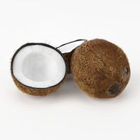 3d realistic coconut real fruit